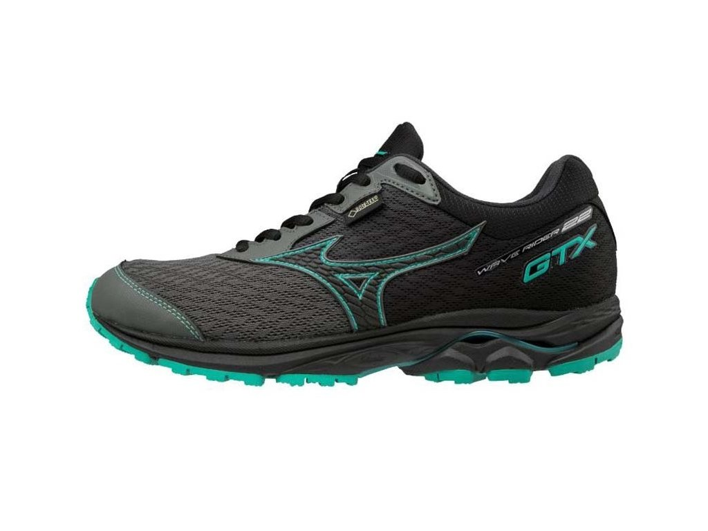 Boty Mizuno Wave Ride GTX J1GD187905
