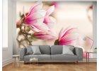 Fototapety magnolie
