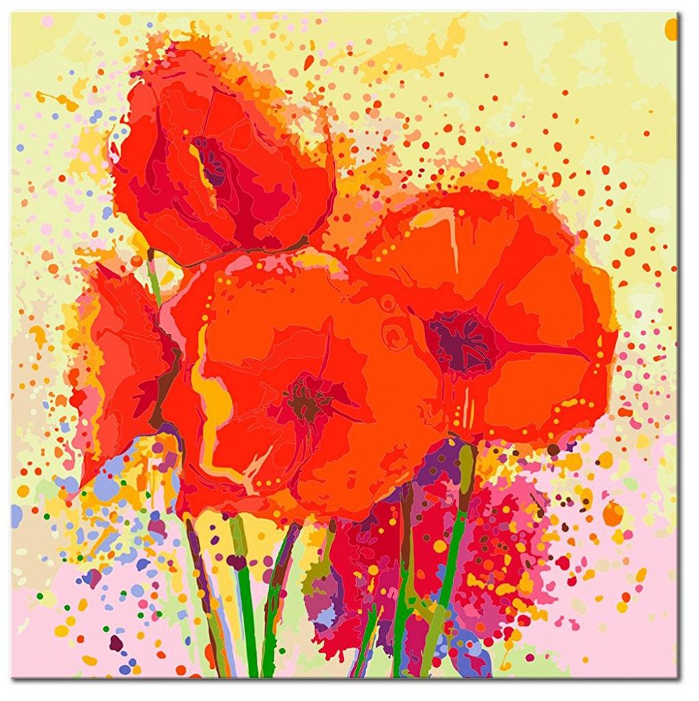 Malování obrazu podle čísel 60x60 máky 60x60 cm