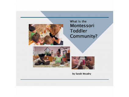 What Is The Montessori Toddler Community?