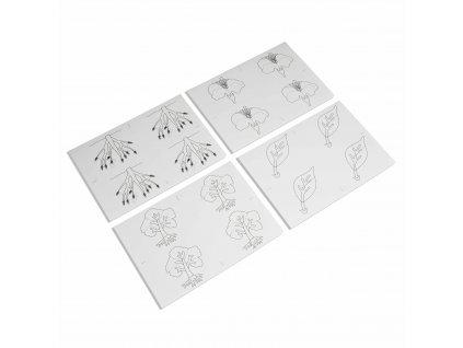 Kopírovací vzory pro Botanická puzzle