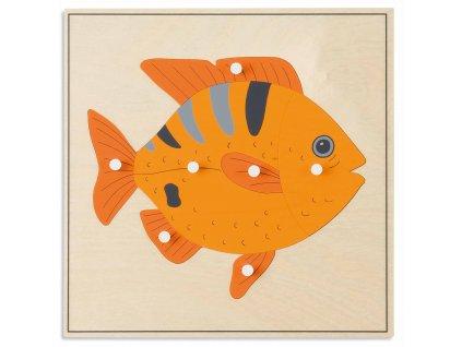 Puzzle – ryba