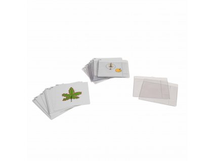 Třetí sada botanických karet