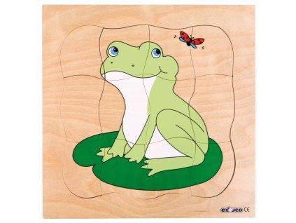 Vývojové puzzle - žába
