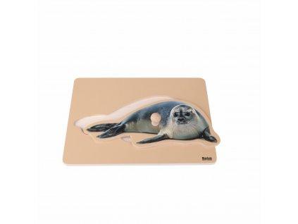 Puzzle pro nejmenší: tuleň
