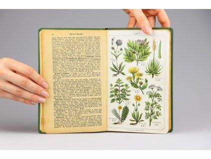 Oertel-Bauer's - Heilpflanzen Taschenbuch