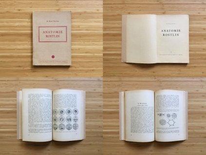 Karel Kavina - Anatomie rostlin (1950)