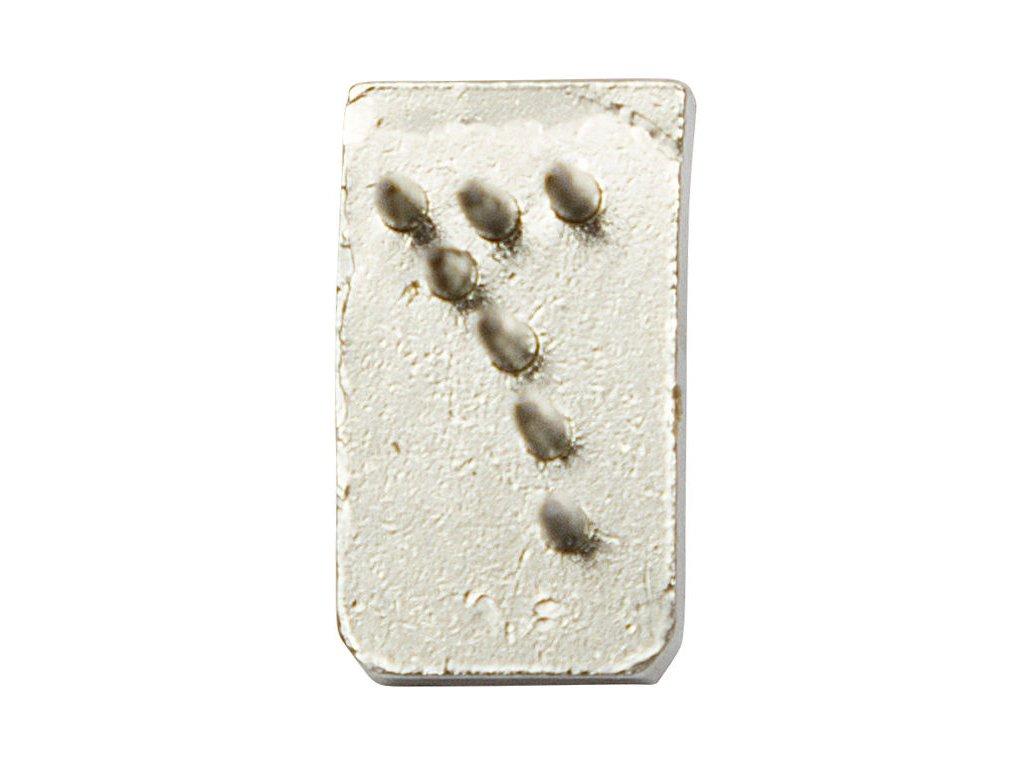 Tetovací číslo, špice, 7mm, jednotlivé - číslice 7