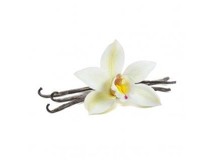 Ochucovadlo BIO vanilka, pyré, 10 kg (vaniglia purea) CZ-BIO-002