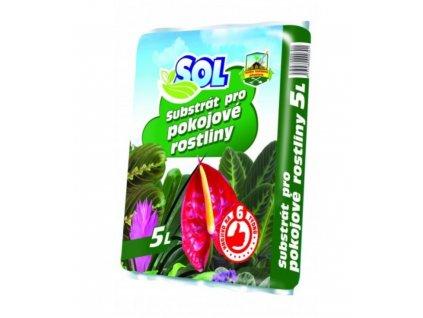 Pokojové rostliny 5l