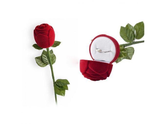 Červená ruža na zásnubný prsteň, zamatová krabička