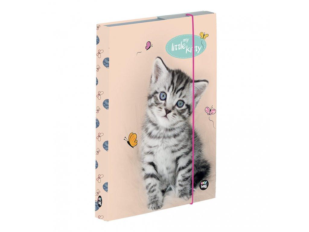 Školní box na sešity A4 Karton P+P - kočka