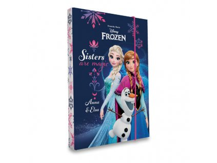 Box na sešity A5 - Frozen