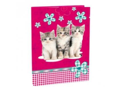skolni box na sesity a4 cats 87761 0