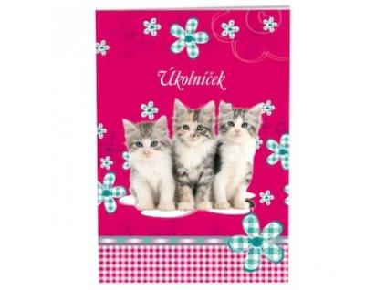 ukolnicek cats 87687 0