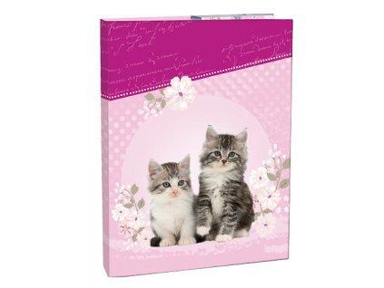 Školní box na sešity A5 Kitten