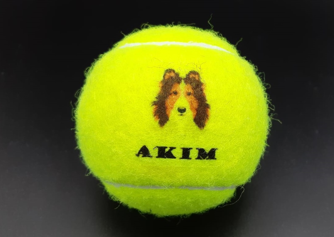 Akim 2