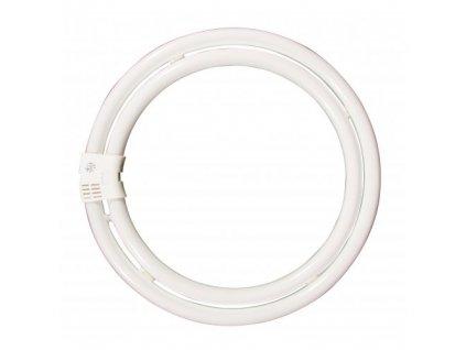 YH 83W/6500K úsporná kruhová zářivka, denní modrá