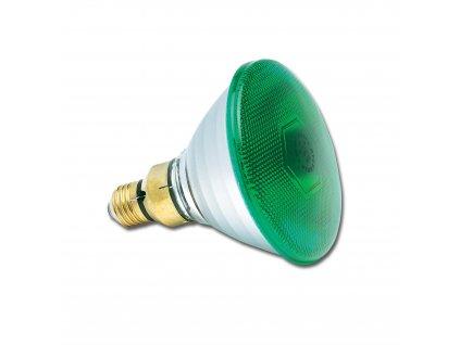 PAR38 240V 80W E27 FL30° Green