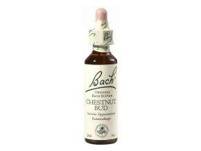Kaštan koňský, poupě (Chestnut Bud) 10 ml - Bachovy esence