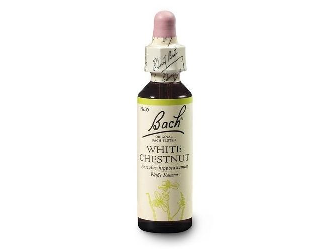 Kaštan bílý (White Chestnut) 20 ml- Bachovy esence
