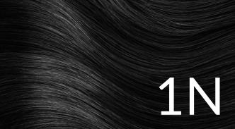 1N černá