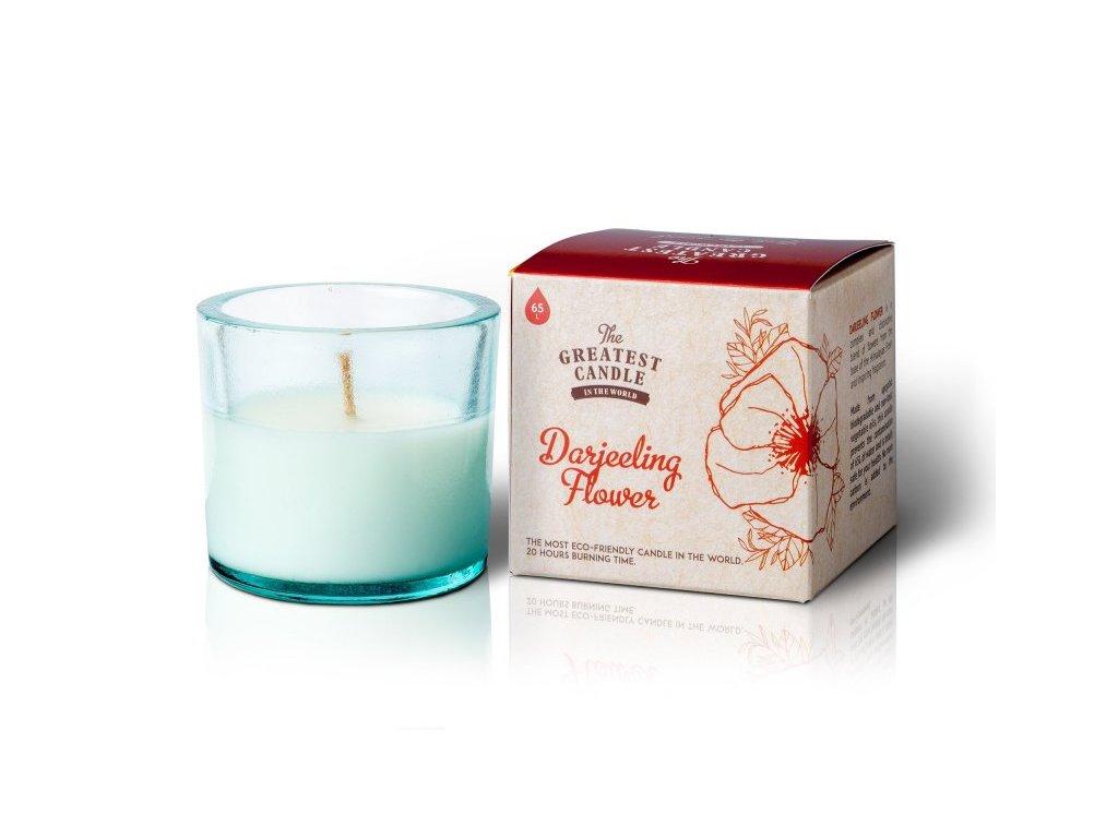 The Greatest Candle Vonná svíčka ve skle - květ darjeelingu, 75g