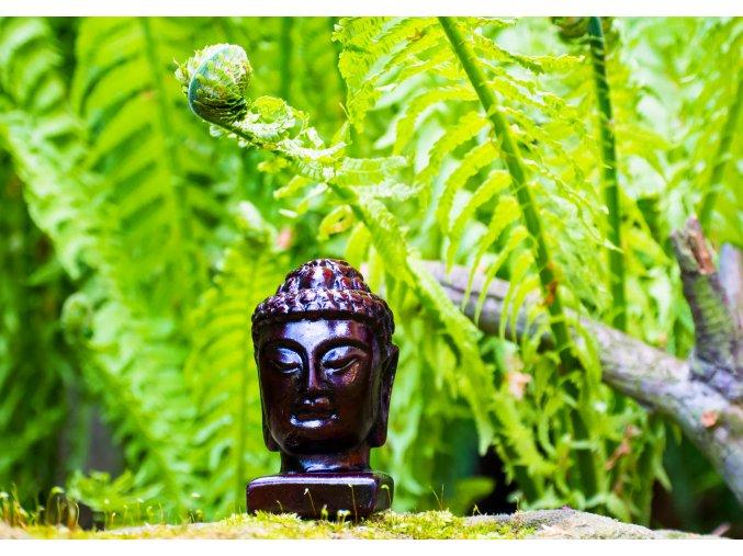 Buddha - soška hlava malá 40x40x70mm