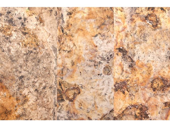 Indian Autumn transparent 122x61 3xpas