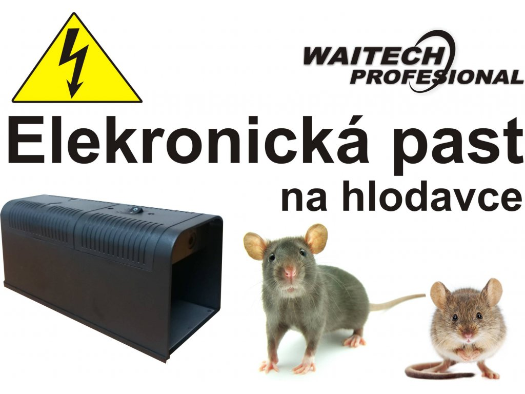 Elektricka pastWP