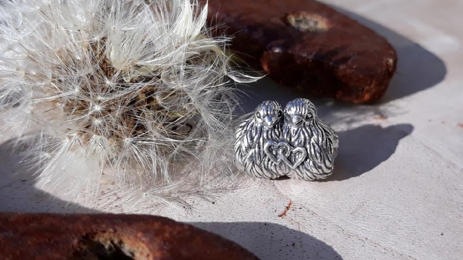 Roztáhni křídla - Spread Your Wings