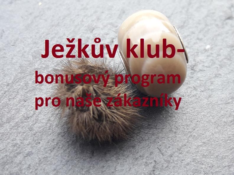 ježkův klub