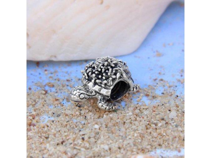 mořská želva