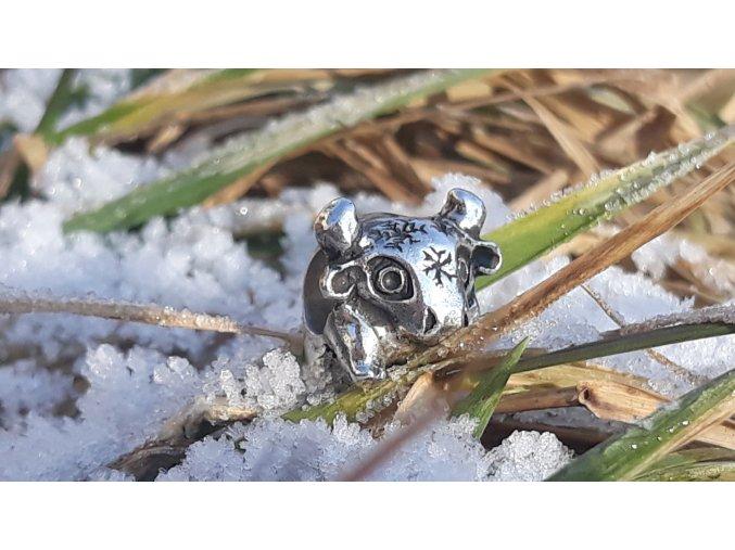 Sněžný býk - POLAR BULL