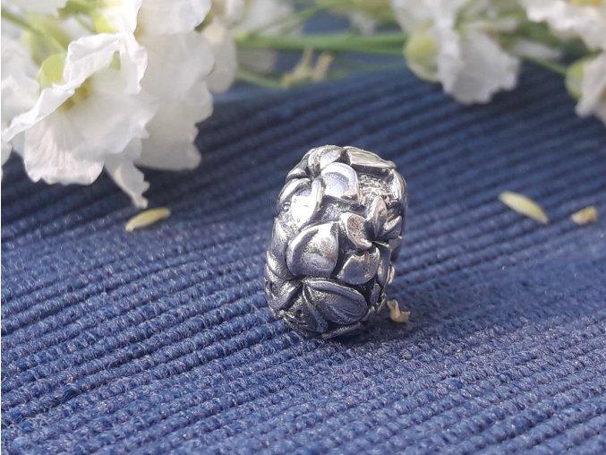 květ frangipani