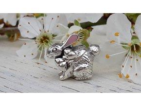 Zajíček -  Easter Bunny Rabbit