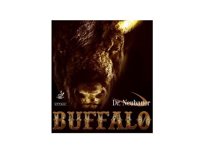 drneubauer buffalo cover
