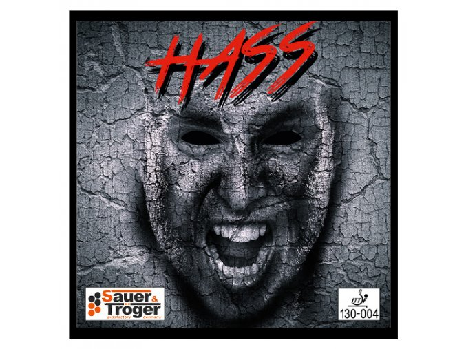 hass front web