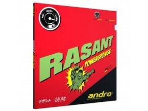 Andro - Rasant Powersponge