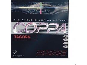 coppa tagora 20120828 1258899730