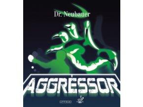 drneubauer aggressor