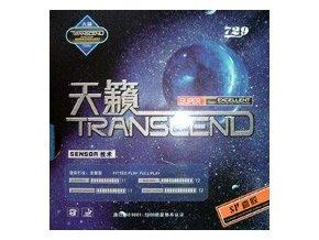Friendship - 729 SP Transcend
