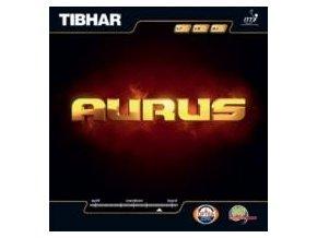Tibhar - Aurus