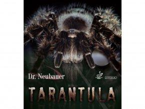 DR. NEUBAUER - TARANTULA