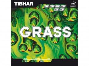 4456 1 grass