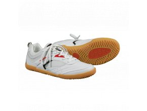 shoe progress rotario