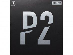 12964 curl p2v