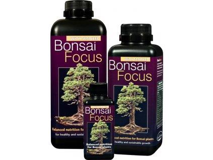 3037 Bonsai Focus family