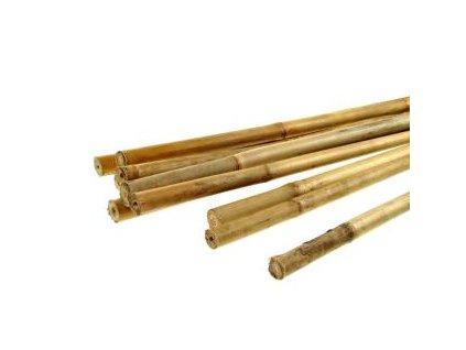 Bambusová tyčinka, 120cm