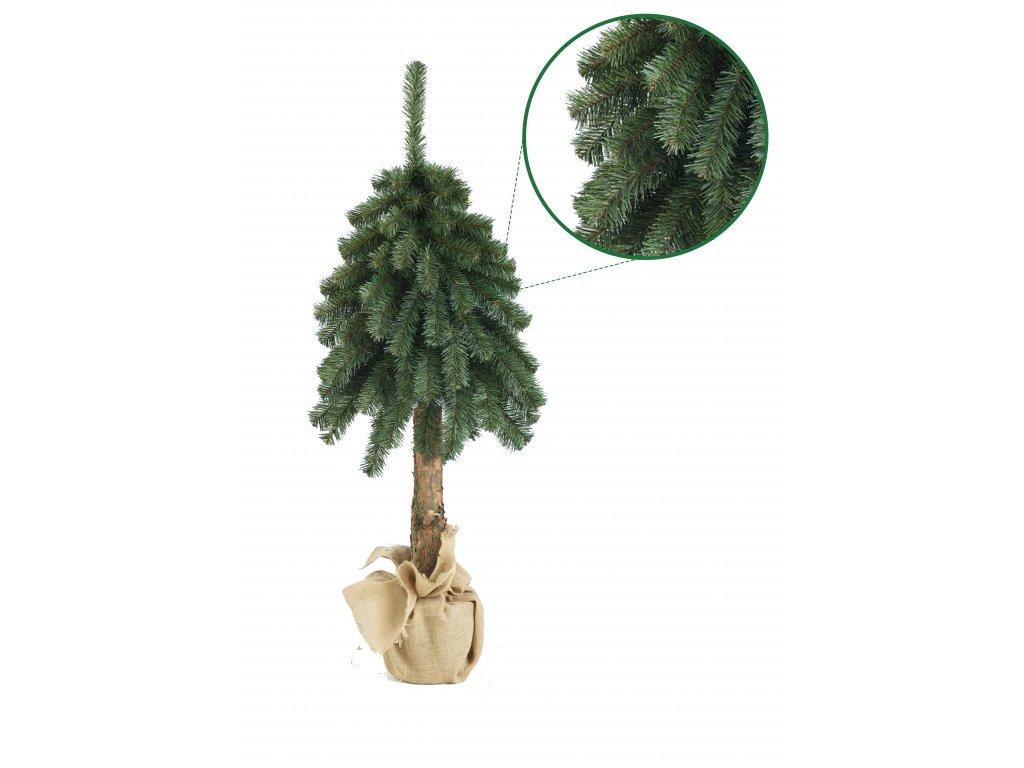 vetvicka na kmeni s detailem stromeckov